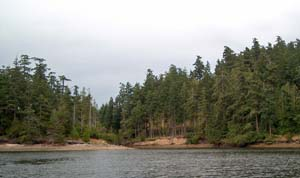 Channel to Pender Island Bridge at High Tide